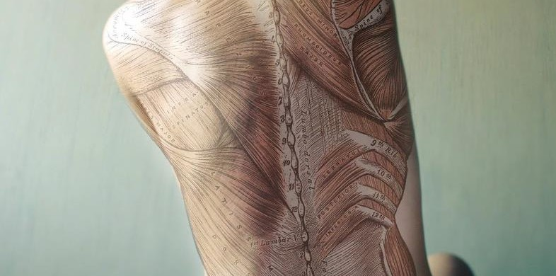 colonna-muscoli Roma