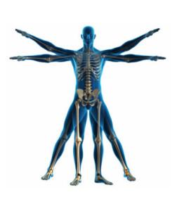 fisioterapia per la colonna