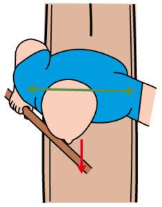 fisioterapia osteopatia canottaggio